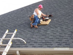 Roofing Leak Repair roof leak repair - northwest roofing