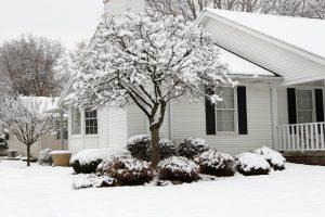 winter-checklist